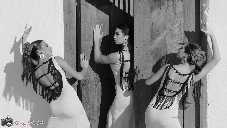 Almas Flamencas.png