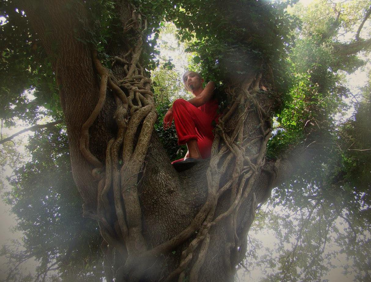 INTRO TREE.jpg