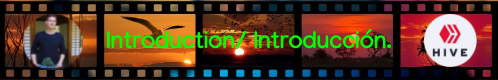 banner-film-introduction.introduccion.1668918_960_720.png