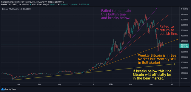 Trend Until Clear Reversal