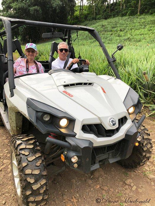 ATV In Pineapple Field.jpg
