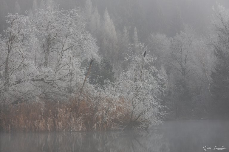 Hive AlphabetHunt Linsendorfer See Lake - Linsendorf and Lake Bohinj