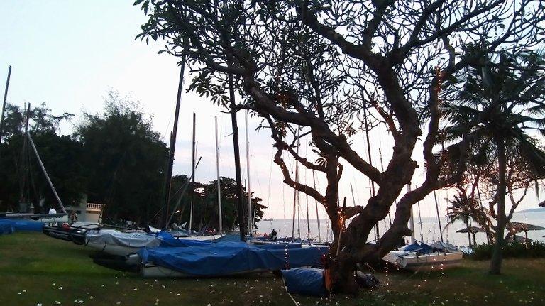 boats_and_sunsets_kohsamui99_029.jpg