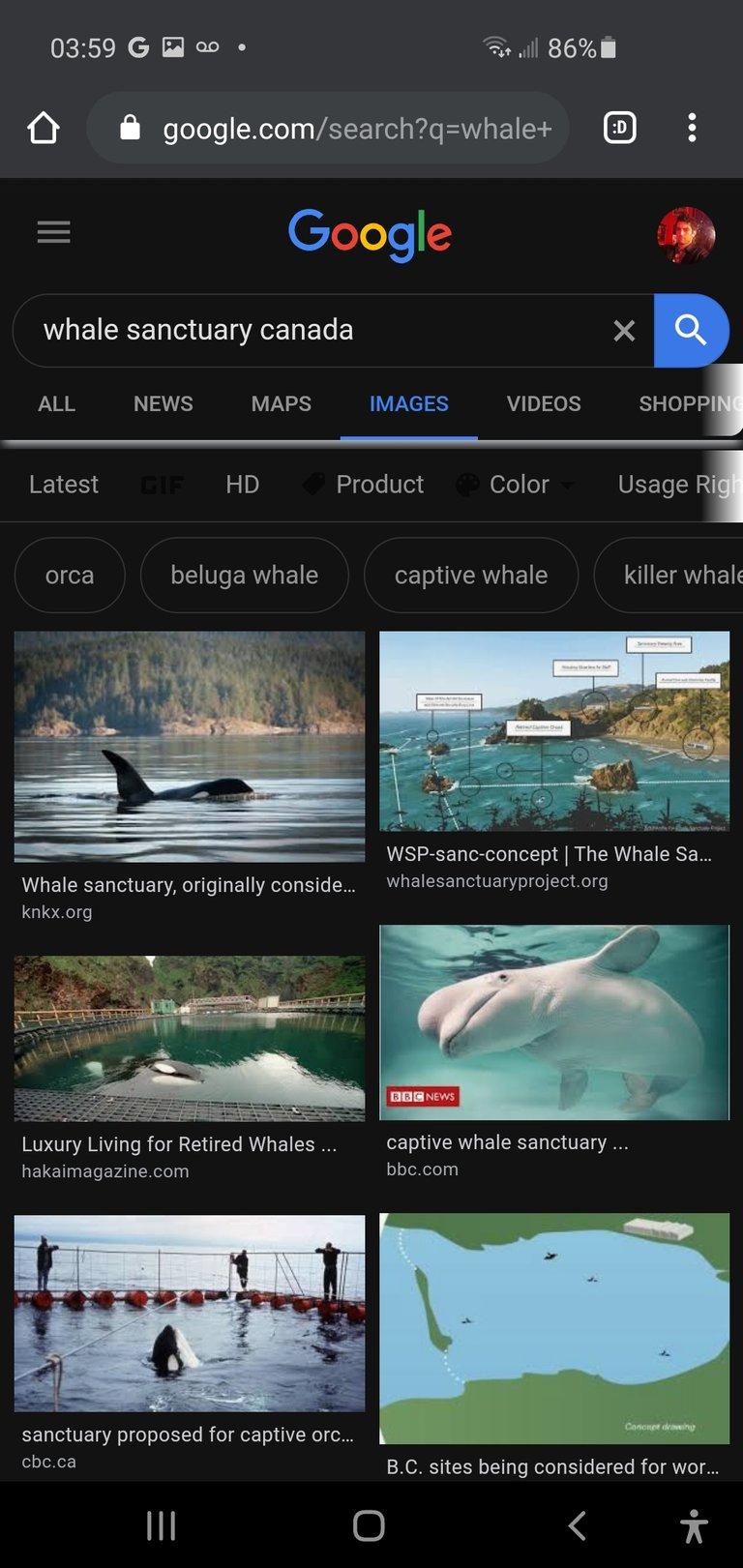 Screenshot_20200904-035945_Chrome.jpg