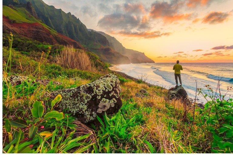 Hawaii Pacific Coastline