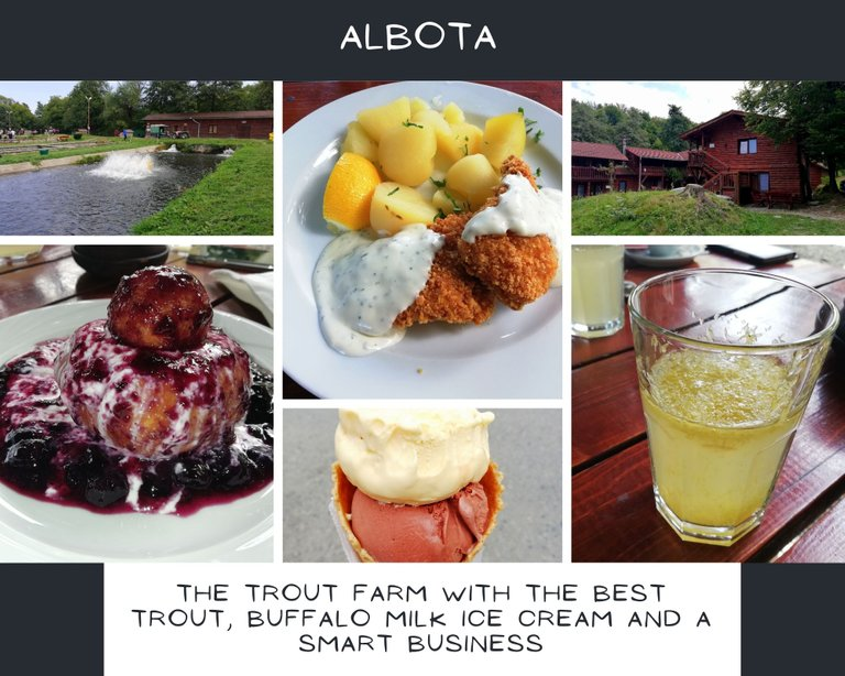 ALBOTA 4.jpg