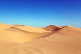 Steem desert