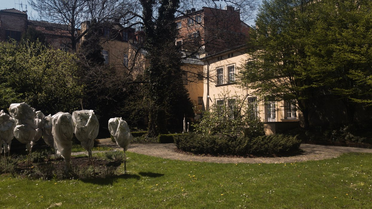 Widok na Muzeum z ogrodu / A view of the Museum from the garden