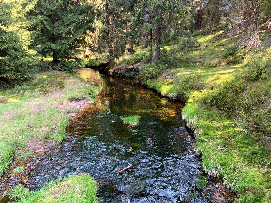 Jagnięcy Potok, dopływ Izery