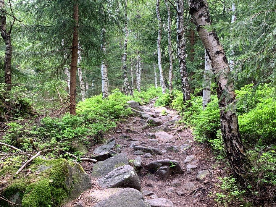 Podejście na Skalnik od Przełęczy Rudawskiej