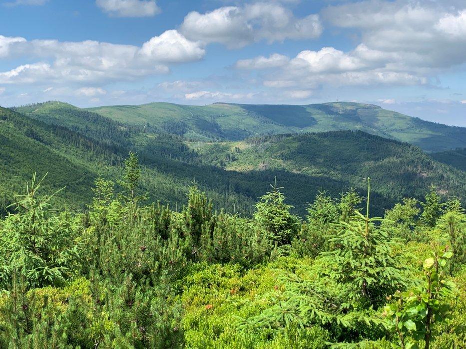 Pasmo Skrzycznego, widok z okolic szczytu Gawlusi