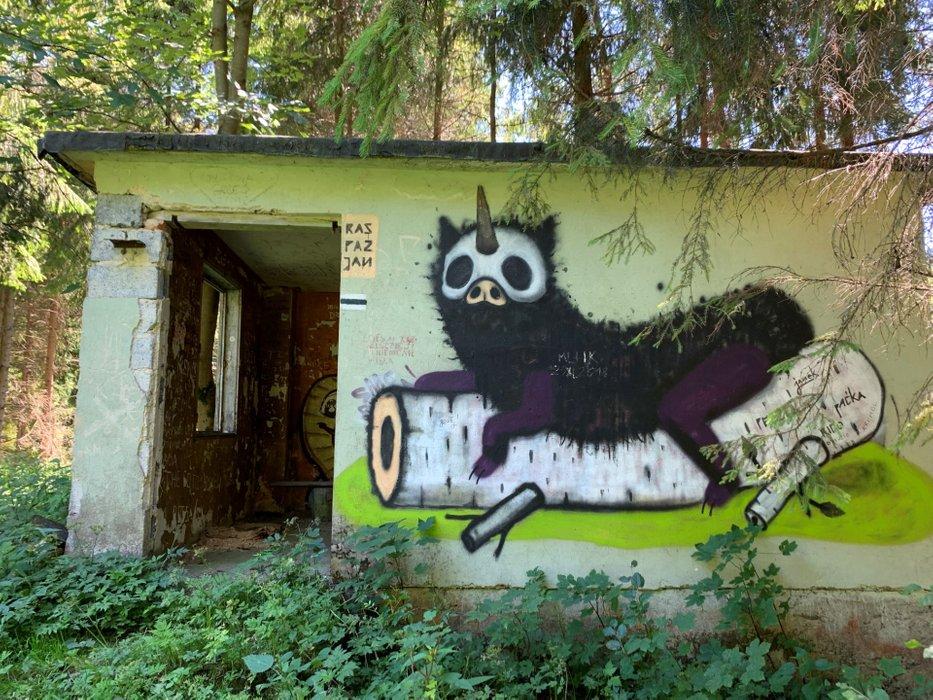 Leśna sztuka - Jan Michał Raspazjan