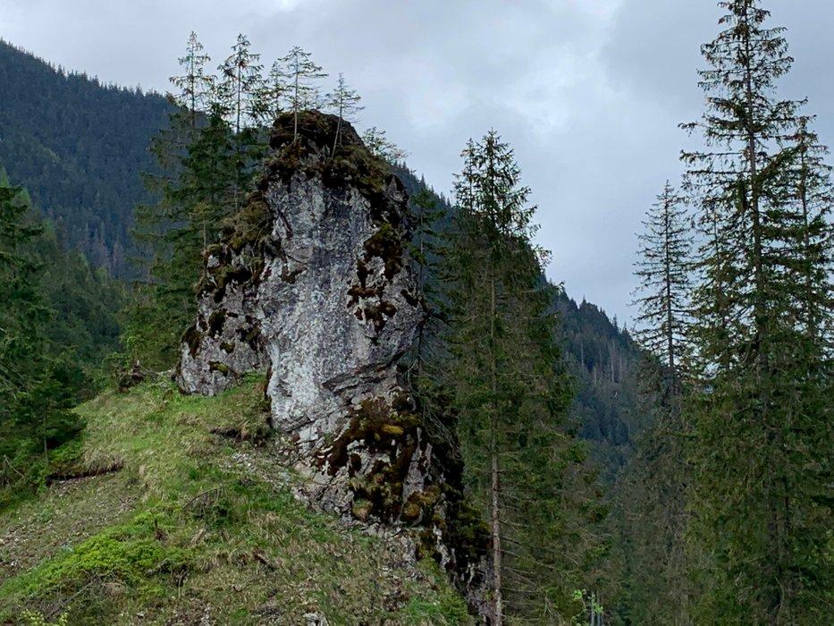 A rock in the Chochołowska Valley