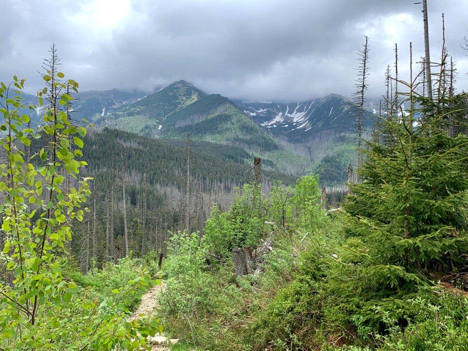 View when approaching Iwaniacka Pass.