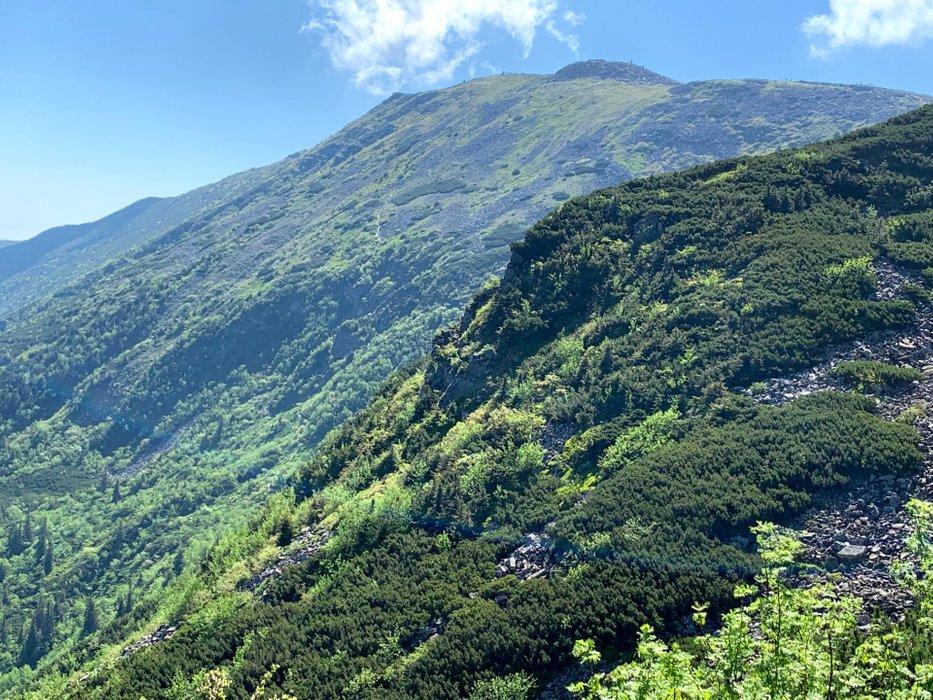 Babia Góra widziana ze szlaku na Przełęcz Brona