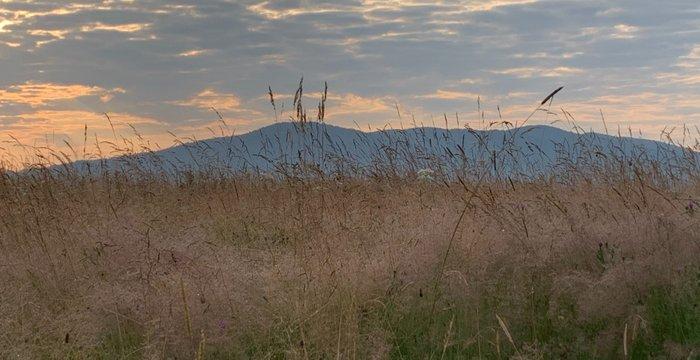 Jaworniki, czyli rzucić wszystko i wyjechać w... Góry Sanocko-Turczańskie.