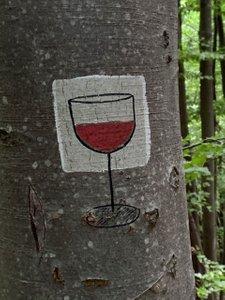 Krzemieniec i Wielka Rawka. Część I - Paportna, Trójstyk granic PL/SK/UA i... wino zamienione w wodę