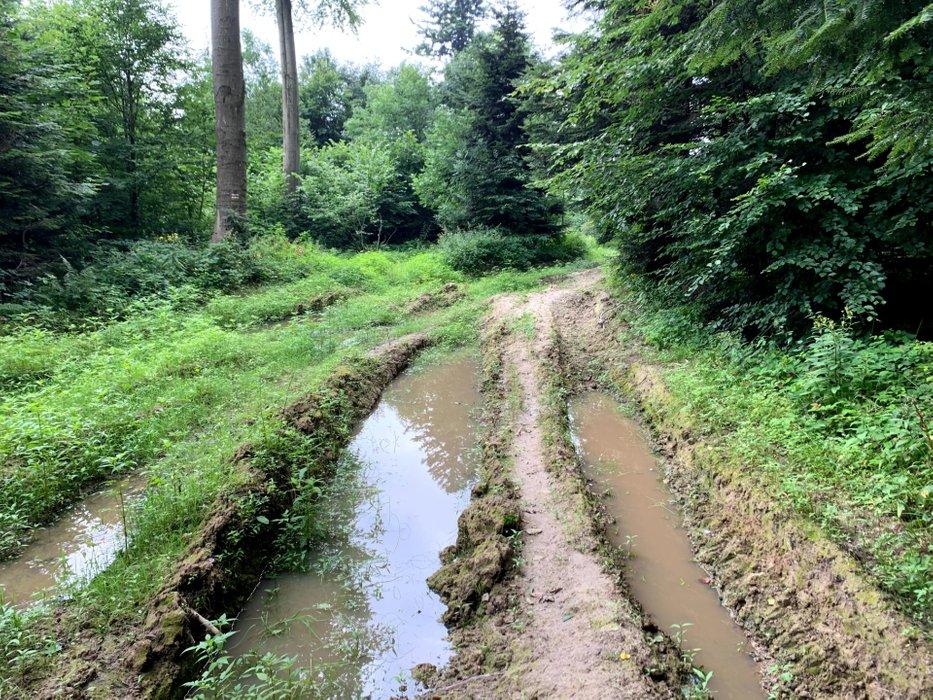 Szlak z Przełęczy Przysłup na Słonny Wschodni
