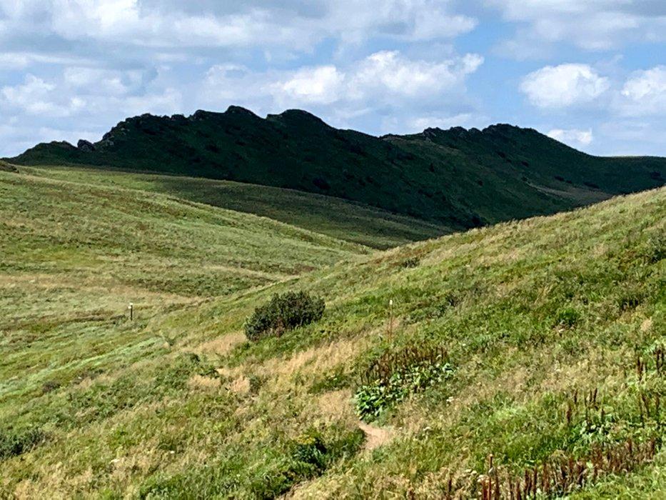 Pasmo Krzemienia, widziane z szlaku Halicz - Tarnica