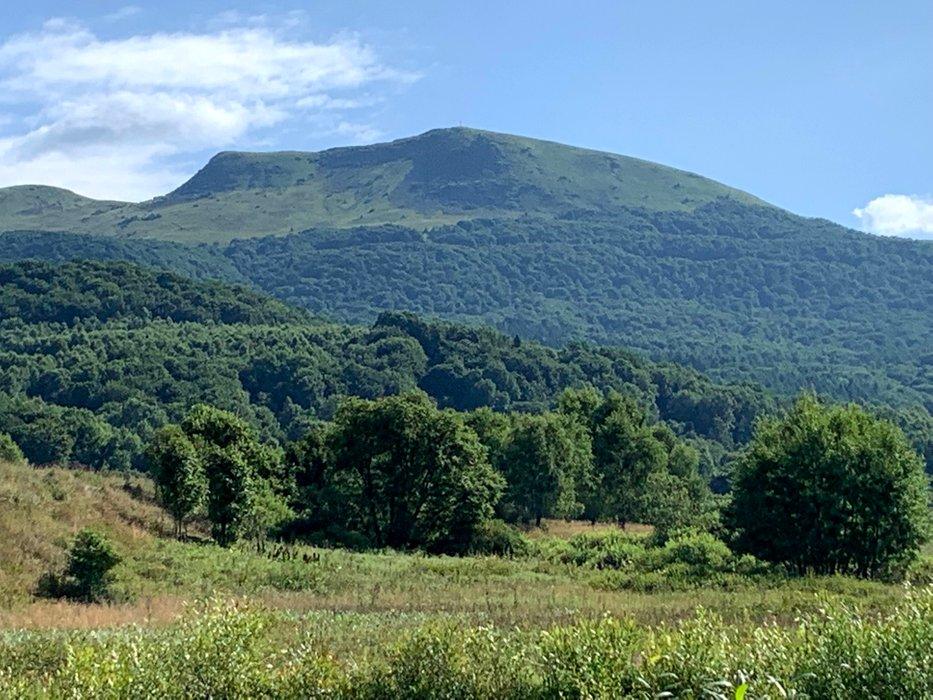 Tarnica, widok z Wołosatego