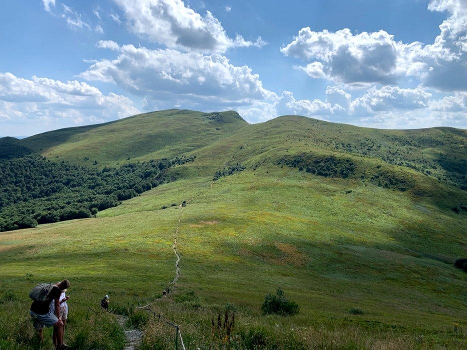Widok na Tarnicę z podejścia pod Bukowe Berdo