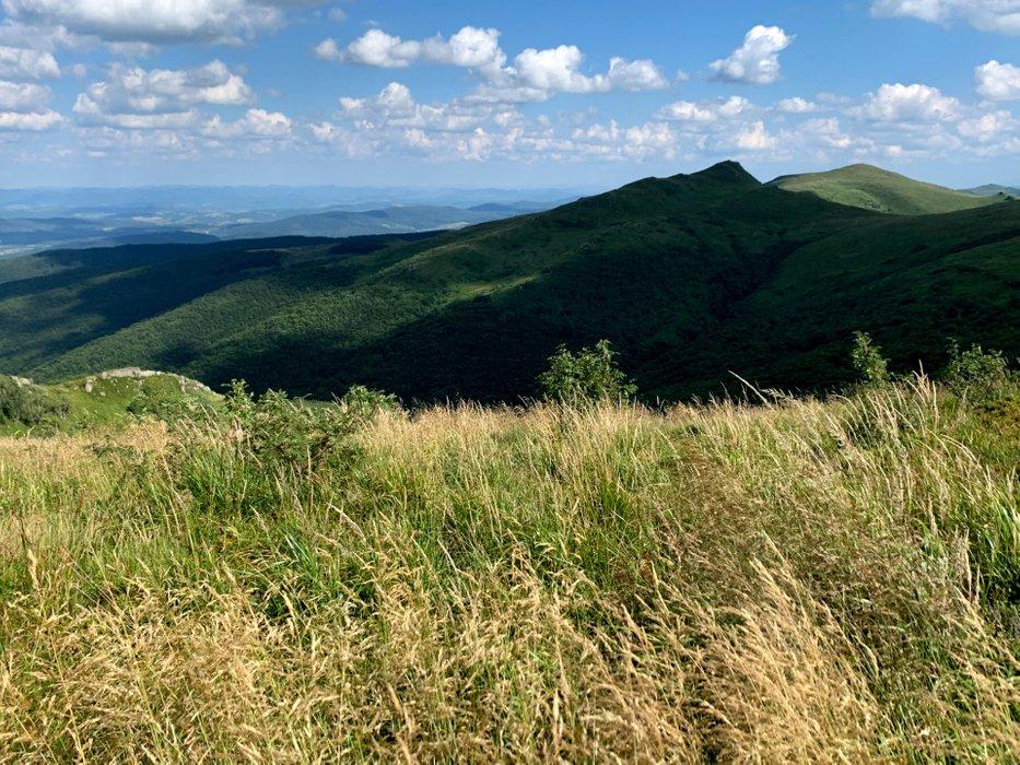 Widok spod szczytu Bukowe Berdo