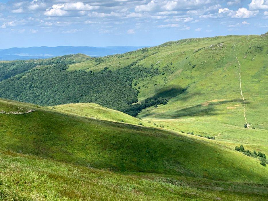Zejście spod Tarnicy na Przełęcz GOPRowską i szlak na Bukowe Berdo