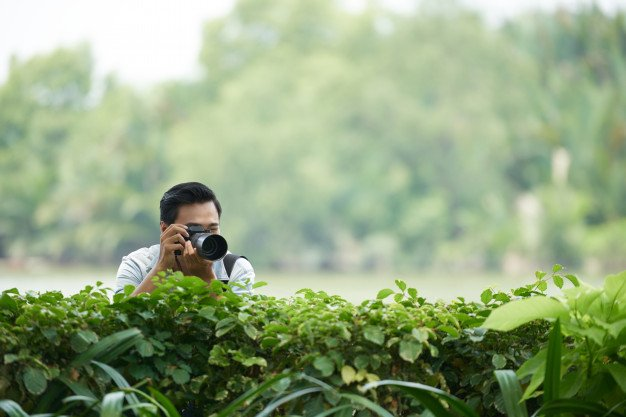 asian_man_with_professional_camera_peering_green_hedge_park_taking_photos_1098_17747.jpg