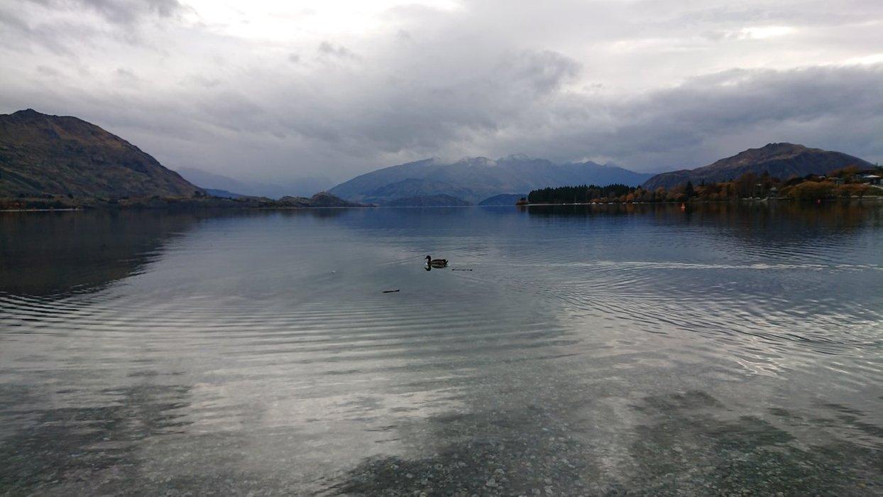 Waterside at Lake Wanaka