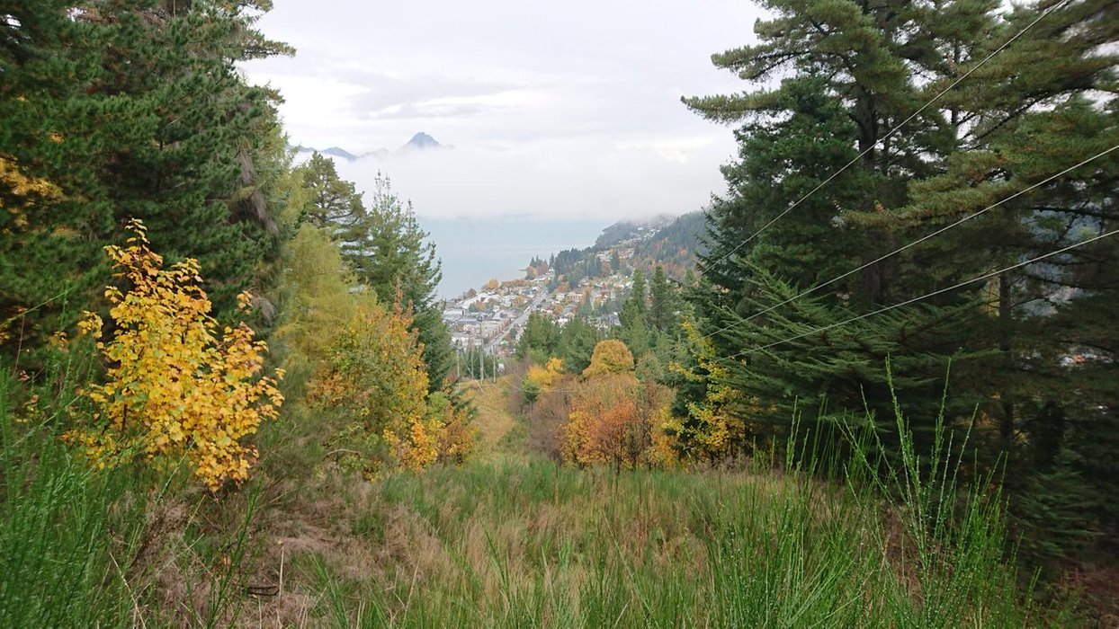 The trees open up to give a great view of the town as you make your steep ascent