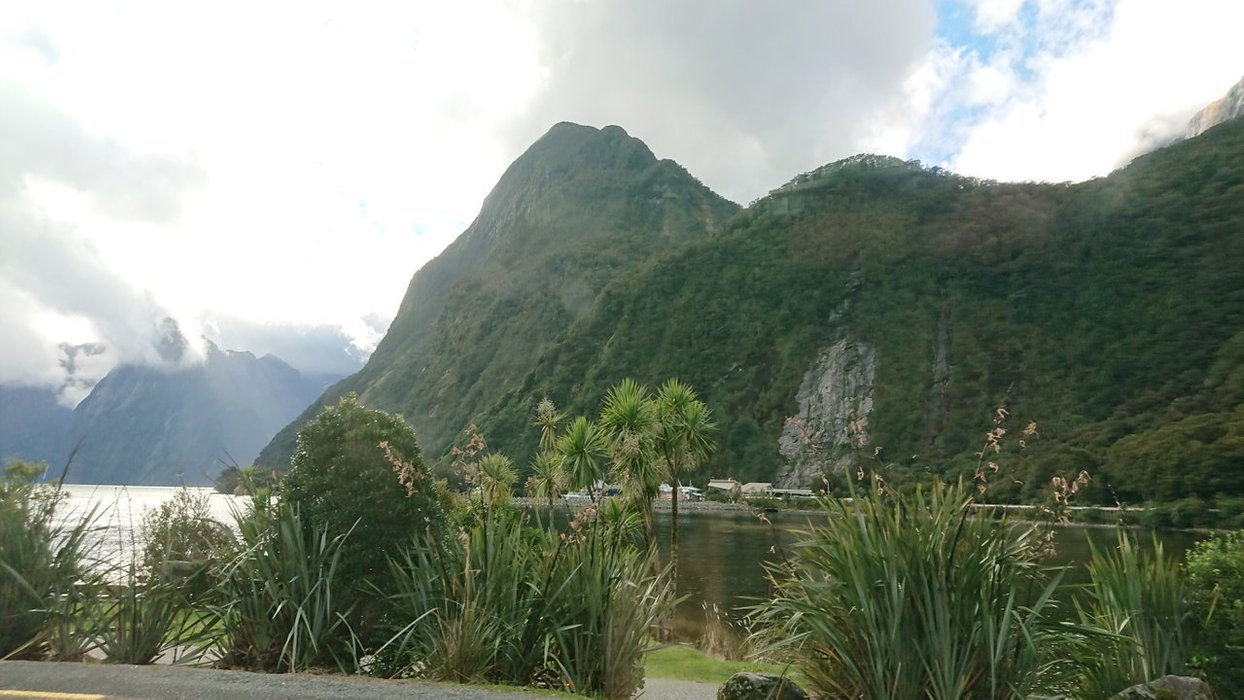 A final picture of Milford Sounds before we say farewell!