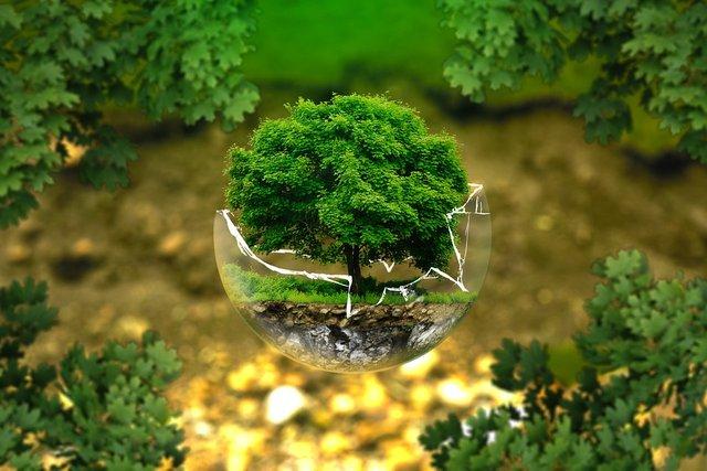 environmental-protection-326923_960_720.jpg