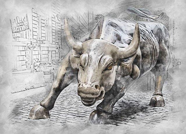 bull-3112617_960_720.jpg