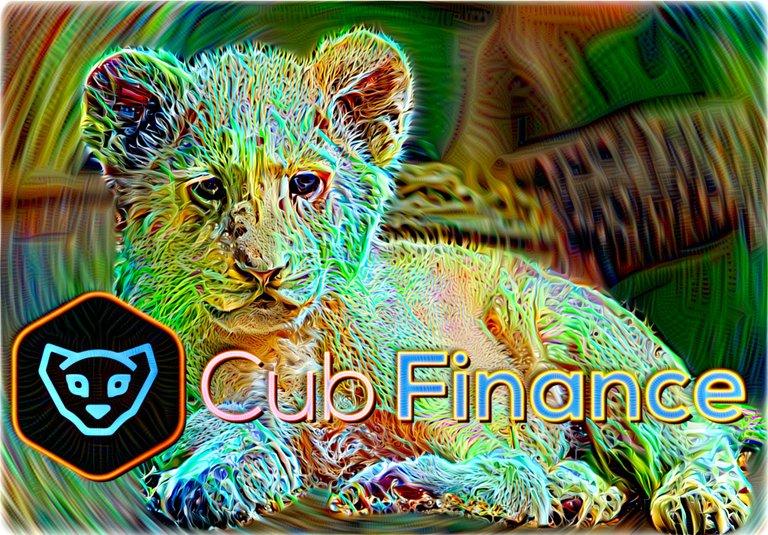 cub-finance-trippy-dd1 (1).jpeg