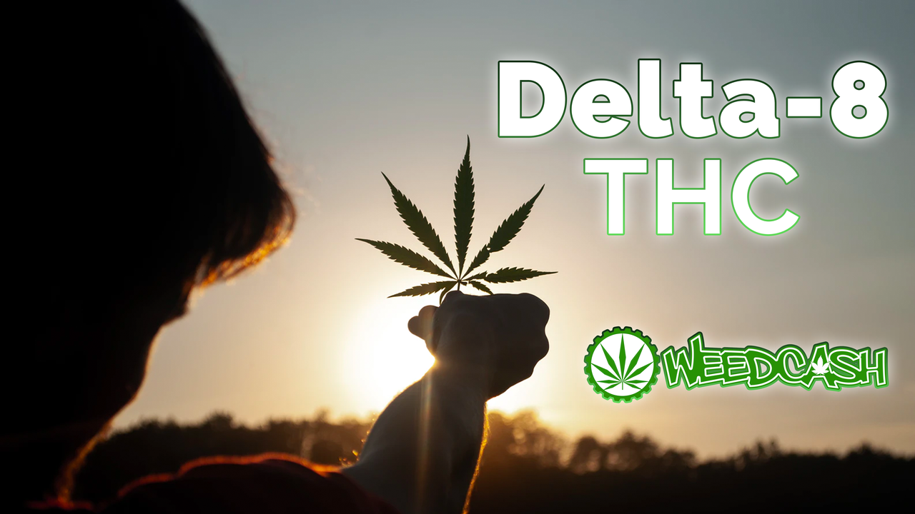 About Delta-8 THC