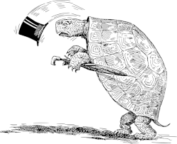 turtle-peque_1280.png
