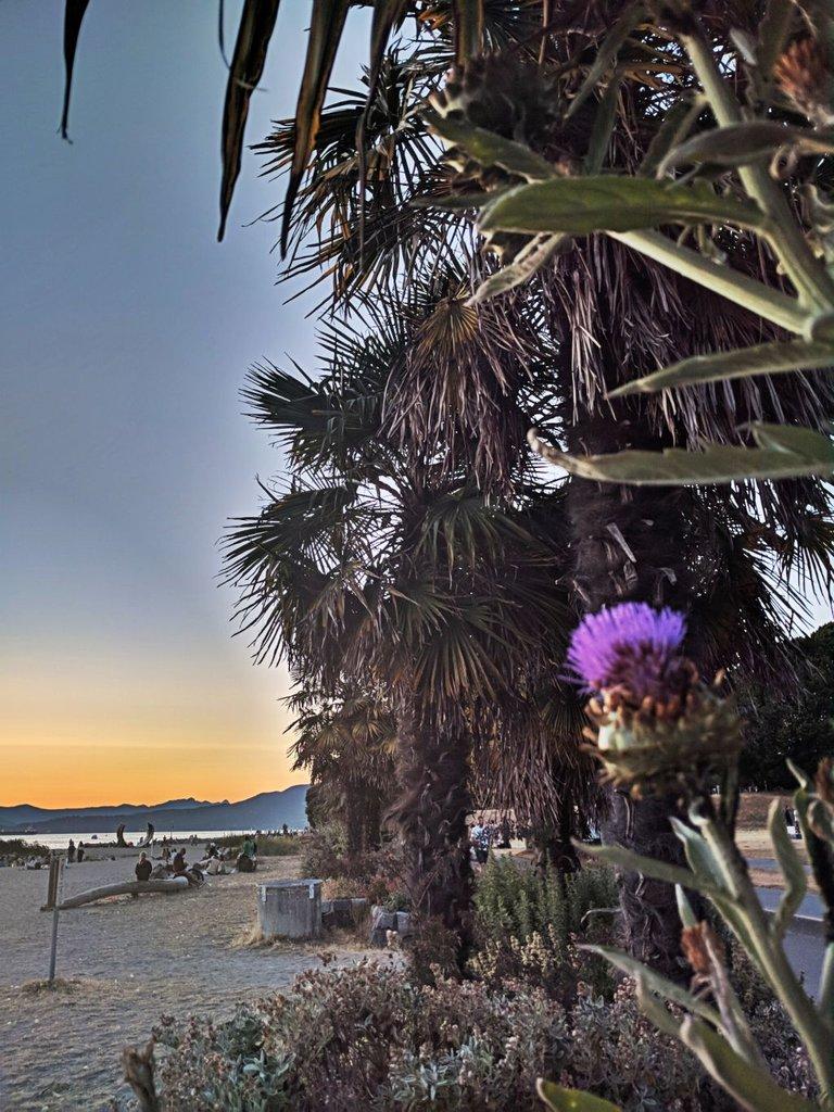 Sunset_0005.jpg