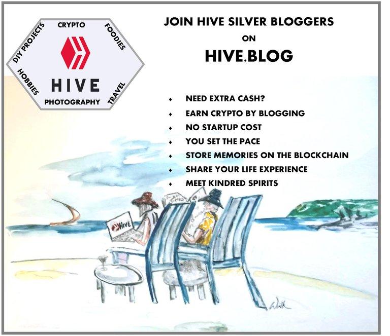 Silver Bloggers Hive Promo.jpg
