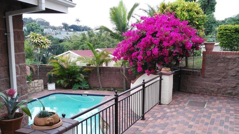 Cottage pool.jpg