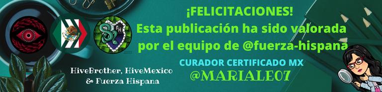 HiveMexico & Fuerza Hispana (2).png