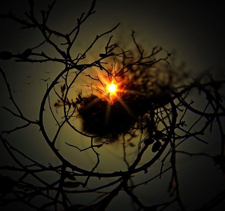 aesthetic-nido eclipse.jpg