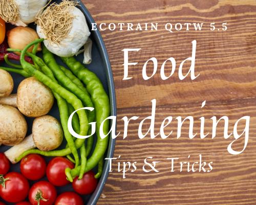 ecoTrain qotw 5.5 food gardening tips and tricks.png