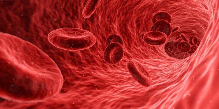 blood1813410_1920.jpg