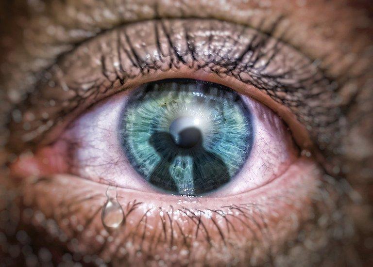 eye4421552_1280.jpg