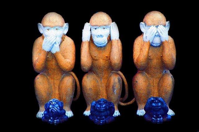 monkey557586_640.jpg