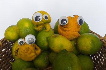More Aliens in my lemon Tree by @steemean
