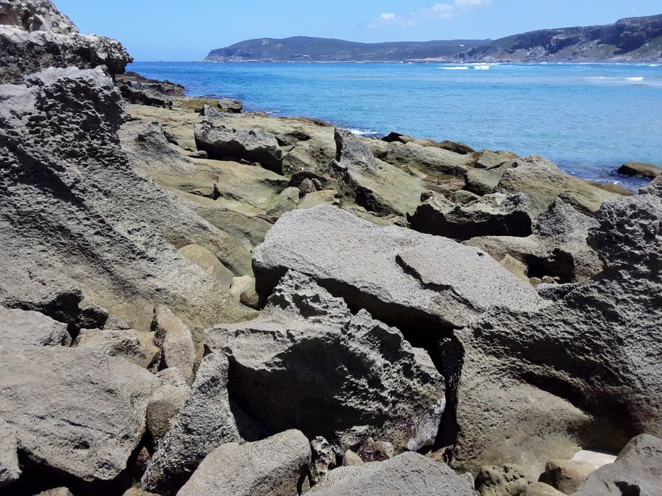 Curious rock formations at the shoreline - what kind of rock is that?