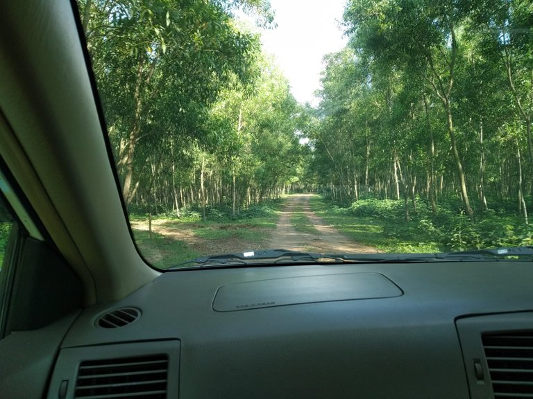 Road To Hill
