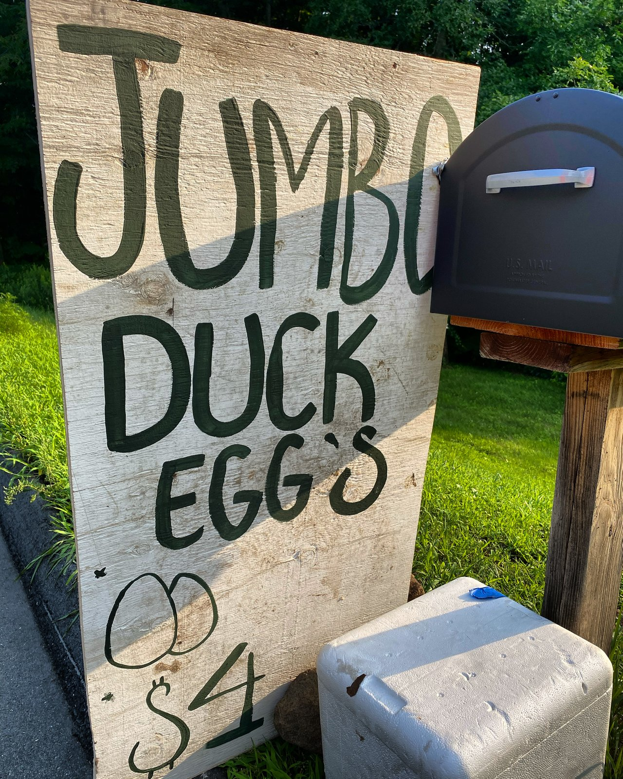 The Sign is Up! - Fresh Jumbo Duck Eggs - Now Available for $4 per Pack