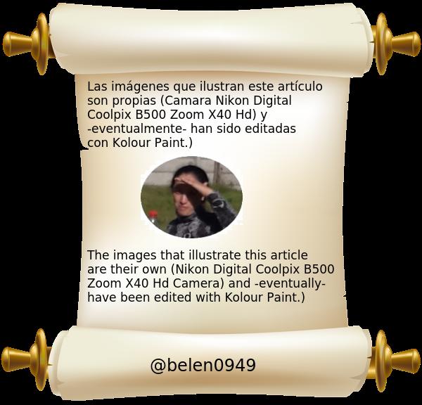 bannerpropiedadimagenesScrolled_Paper_Transparent_Image2042186820.png